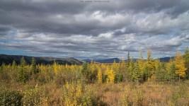 Landschaft am Dempster Highway
