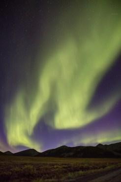 Nordlicht am Dempster Hwy