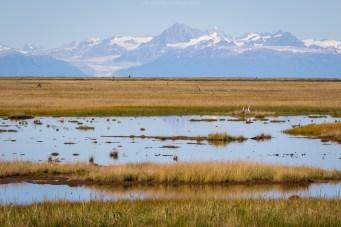 Weitere Vulkane des Lake Clark Nationalparks
