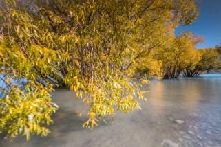Herbstfarben am Lake Tekapo