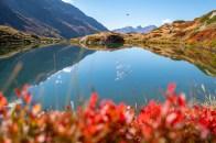 Bergsee mit Bergdohlen