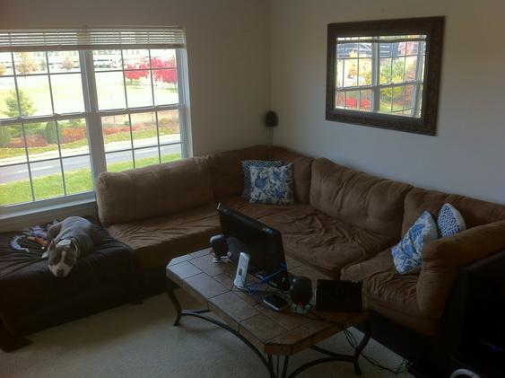 Bad Craigslist Couch