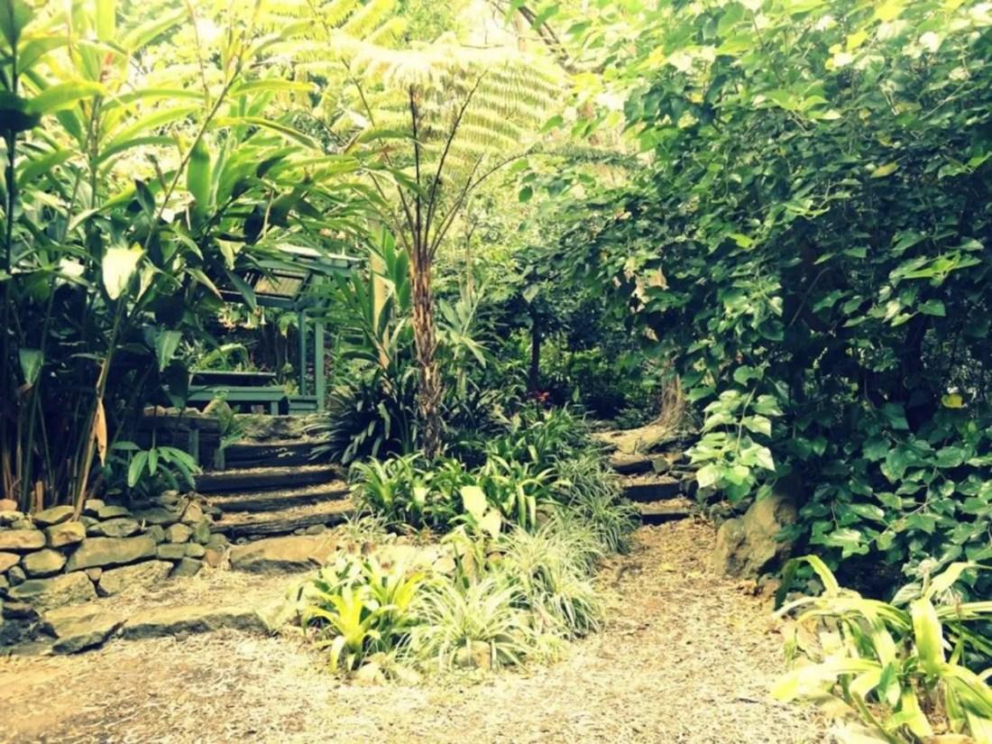 Parques y jardines. Lugares para visitar en Sydney, Australia.