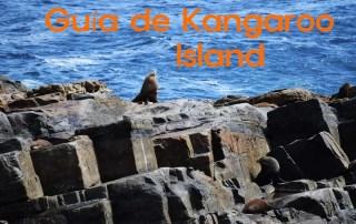Guía de Kangaroo Island South Austalia