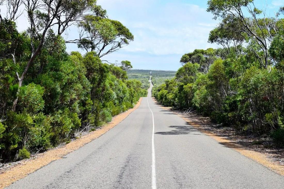 Kangaro island Australia en 15 días