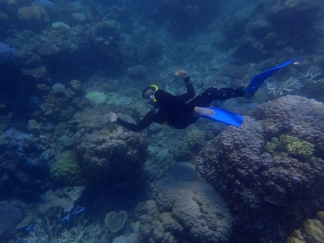 por qué Australia. Gran Barrera de Coral