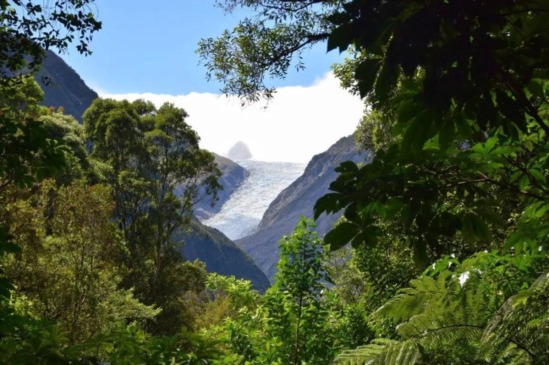 Fox Glacier Nueva Zelanda