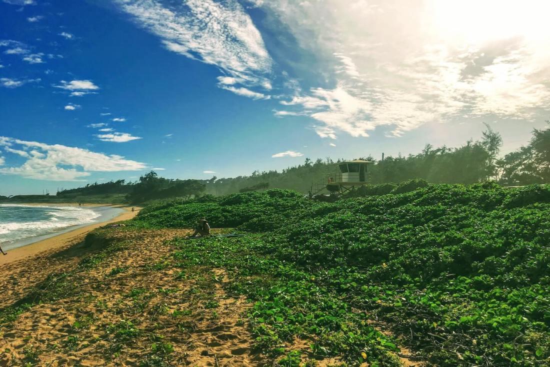 Keālia Beach Hawaii Kauai