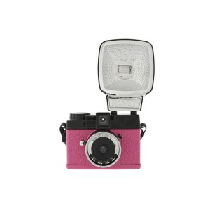 Diana Mini en Rose