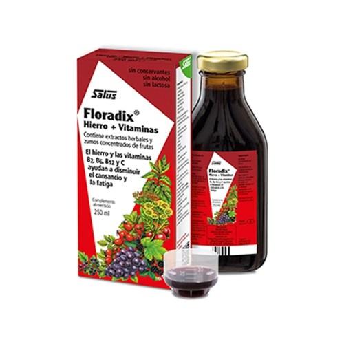 Floradix hierro + vitaminas 500 ml – Salus