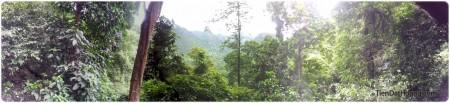 Khung cảnh núi rừng, thiên nhiên xanh ngút ngàn ở cửa động Thiên Đường. Click vào để xem ảnh full-size.