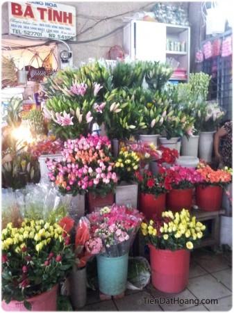 Một góc khác của chợ Đông Ba: đủ sắc màu hoa.