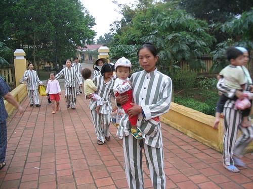 Thảo Trường:  Những Đứa Trẻ Đầu Thai Giữa Hàng Rào