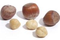 Когда собиратьсозревают лесные орехи фундук