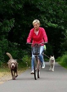 Fahrrad-/Dogscooter Ausfahrt @ Zinnowitz | Karlshagen | Mecklenburg-Vorpommern | Deutschland