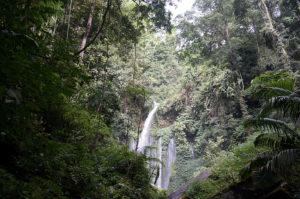 Lombok-Wasserfall-1-6-jpg