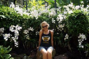 Singapur botanischer Garten