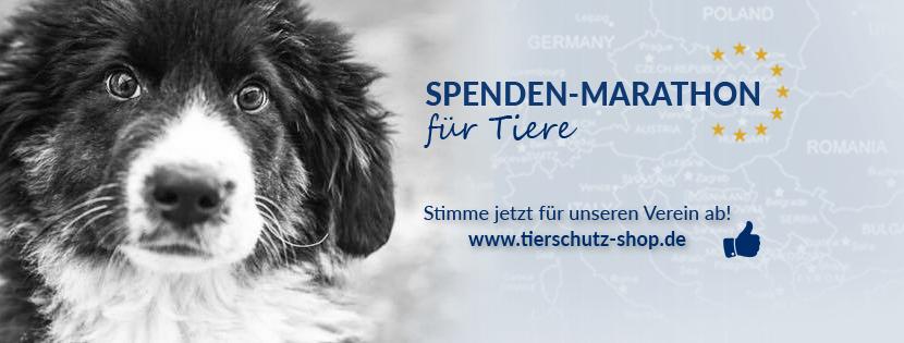 Spendenmarathon für Tiere beginnt!