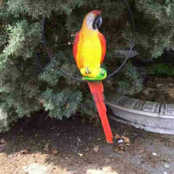 Bemalter Papagei für Garten Deko