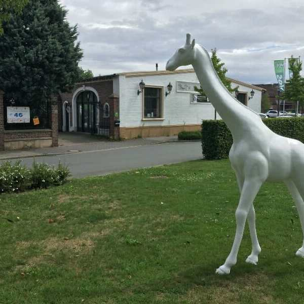 Rohling Giraffe 232 cm