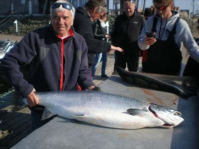 Dieser Lachs wurde von Jürgen beim Trollingfischen (Cap Arkona) gefangen. Der Fisch wurde im Hafen Glowe gewogen und brachte etwas über 21 kg auf die Waage.