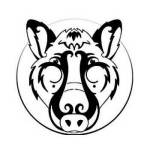 Zodiaco chino cerdo