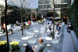 nyc_Paley_park_nyc_xlarge