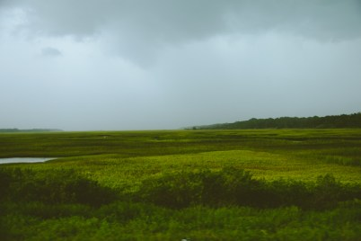 This area of Florida is lush with greenery. We were off to Amelia Island with the storm all around us.