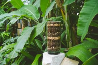 Botanical Garden | Spice World