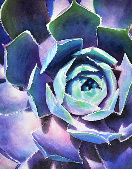 succulent watercolor