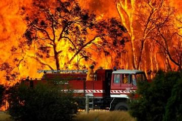 Australian Bushfrire Crisis