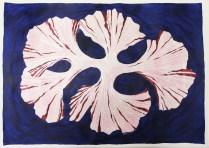 Pink Seaweed