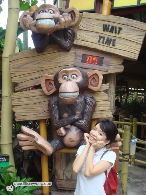 madagascar monkey USS