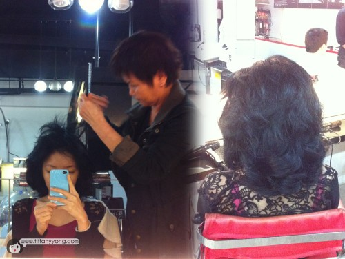 hair profile