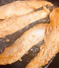 Fish being shallow fried