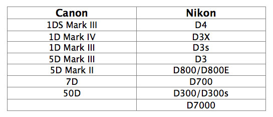 Nikon and Canon DSLR Bodies That Can Be Cleaned at Perfect Image Camera, Inc.