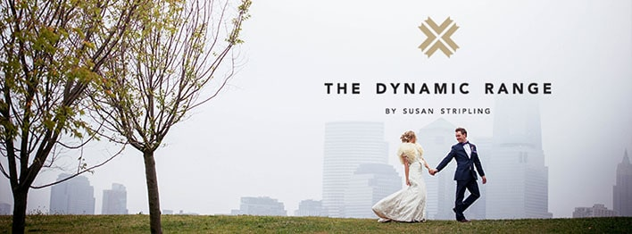 The Dynamic Range, by Susan Stripling Mautner