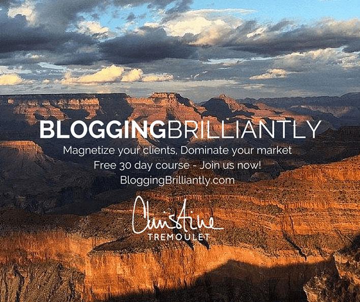 Blogging Brilliantly by Christine Tremoulet