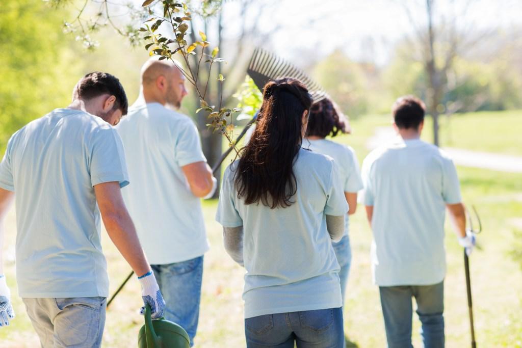 TigerMountain Foundation | Community Garden Volunteers