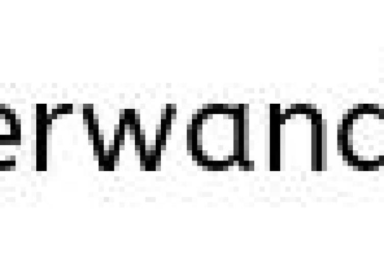 nuremberg museums.JPG