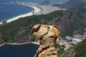 View of Copacabana from Sugar Loaf Mountain