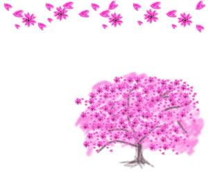 バナー広告、webデザインのフリー素材:ピンクの桜の木と花びらのフレーム(飾り枠)(300×250pix)