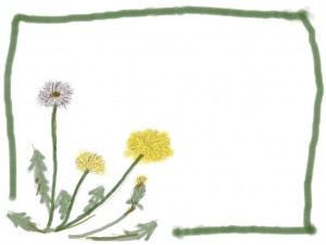 バナー広告、ネットショップのwebデザイン:大人可愛いたんぽぽの飾り枠のフリー素材 (640×480pix)