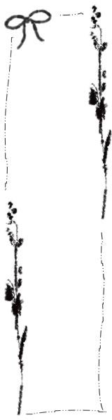 フリー素材:バナー広告制作;大人可愛いモノクロのリボンと北欧風デザインの木の枝と葉っぱとラフなラインの飾り枠のイラスト(160×600pix)
