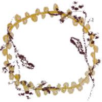 ガーリーなフレームのフリー素材:アイコン(twitter,mixi,ブログ);北欧風のシンプルな木の枝と芥子色のレースの縁飾りみたいな飾り枠;200×200pix