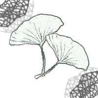 フリー素材:アイコン(twitter,mixi,ブログ);モノクロの木の葉(イチョウ)とガーリーなレースの飾り枠;200×200pix