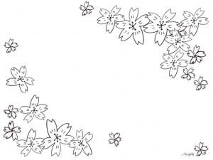 フリー素材:桜のフレーム;モノトーンのシンプルな鉛筆画の桜の花いっぱいの大人可愛い飾り枠:640×480pix