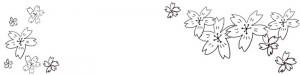フリー素材:春のヘッダー:モノトーンのシンプルな鉛筆画の桜の花いっぱいの大人可愛い飾り枠;800×200pix
