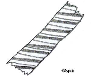 フリー素材:ガーリーイラスト;モノトーンの大人可愛い鉛筆画のストライプのマスキングテープ;300×250pix