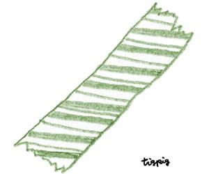 フリー素材:;大人可愛いくすんだグリーンのマスキングテープのイラスト;300×250pix